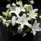 Kompozycja z kwiatów żywych w misie ceramicznej; wielkość: średnica ok. 40 cm; sadzonka rododendron Cunningham White, lilia biała, eustoma biała, margarytka zielona (Santini), zieleń dekoracyjna.