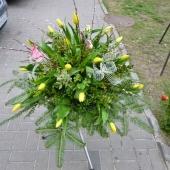 Wiązanka z kwiatów żywych w gąbce florystycznej; wielkość: duża; tulipan żółty, podkład jodłowy, zieleń dekoracyjna.