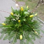 Wiązanka z kwiatów żywych w gąbce florystycznej; wielkość: średnia; tulipan żółty, podkład jodłowy, zieleń dekoracyjna.