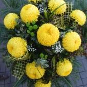 Wiązanka sezonowa z kwiatów żywych na gąbce florystycznej; wielkość: duża; 12 żółtych chryzantem, podkład jodłowy, zieleń dekoracyjna.