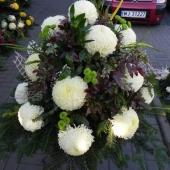 Kompozycja sezonowa z kwiatów żywych w gąbce florystycznej; wielkość: bardzo duża; 18 perłowych chryzantem, podkład jodłowy, zieleń dekoracyjna.
