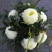 Kompozycja sezonowa z kwiatów żywych na gąbce florystycznej; wielkość: średnia; 7 perłowych chryzantem, podkład jodłowy, zieleń dekoracyjna.