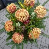 Wiązanka sezonowa z kwiatów żywych na gąbce florystycznej, 7 złocistych chryzantem, podkład jodłowy, zieleń dekoracyjna.